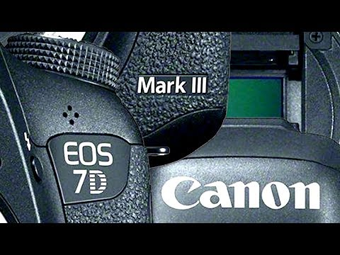 Canon 24-70mm f/4 L IS Review