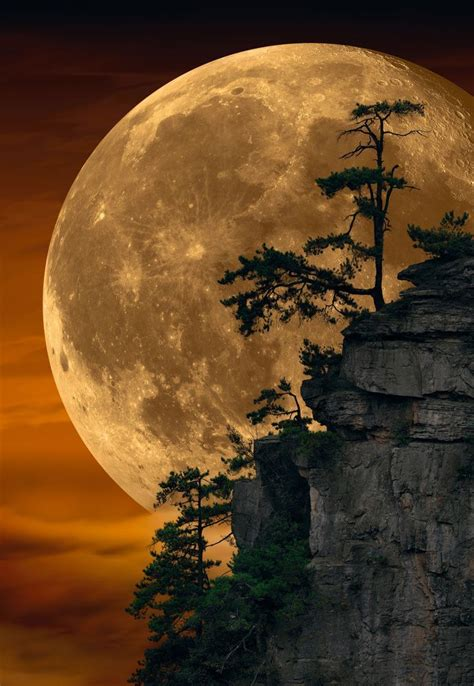Can this Photo by Peter Lik Possibly be Real? | Beautiful